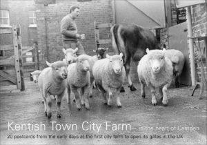 Farm Heritage Postcard book cover